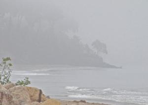 FoggyBeach